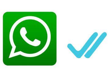 14 reglas para evitar que los grupos WhatsApp sean un fraude
